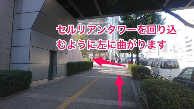 セルリアンタワーを回り込むように左に曲がります。