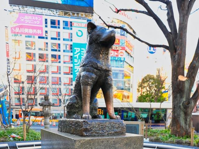 渋谷の駅近レンタルスペース